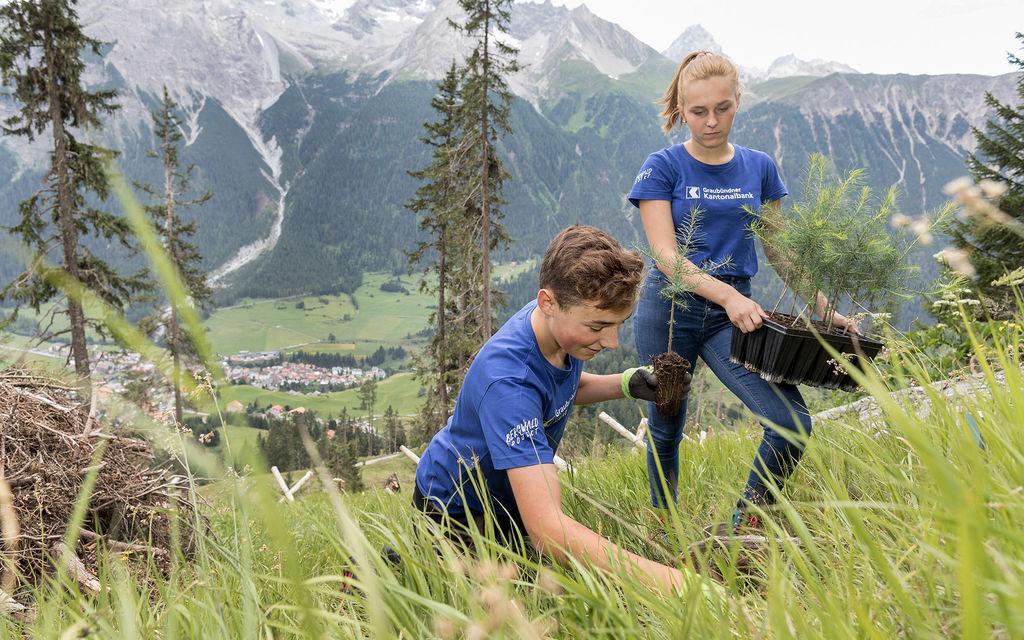 Lavori estivi nei boschi per 60 giovani