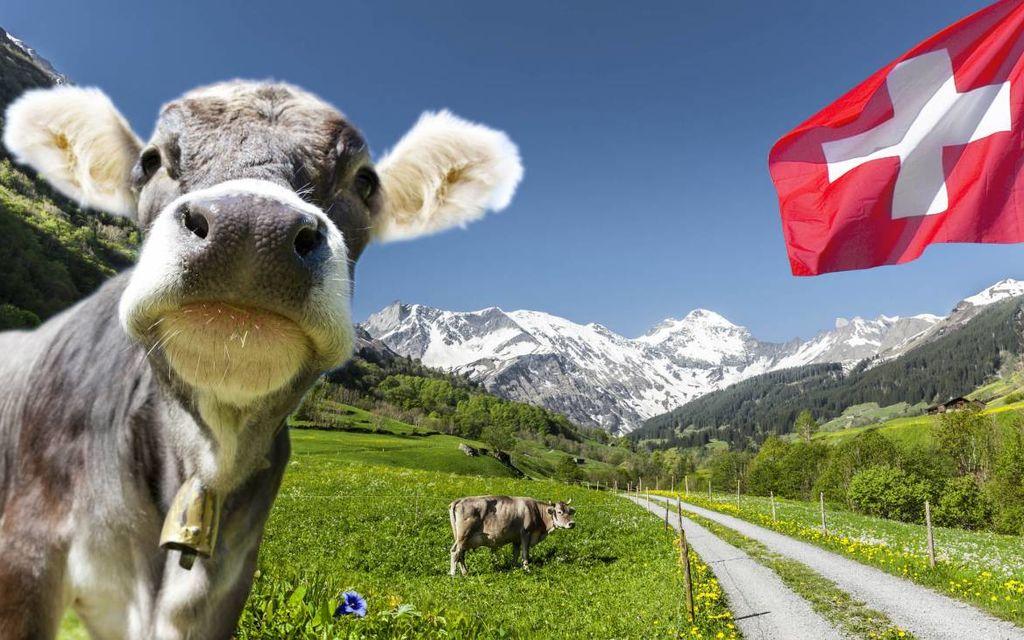 L'agricoltura svizzera bistrattata dalla meteo
