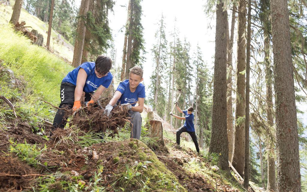 Banca cantonale: lavoro estivo per 60 giovani