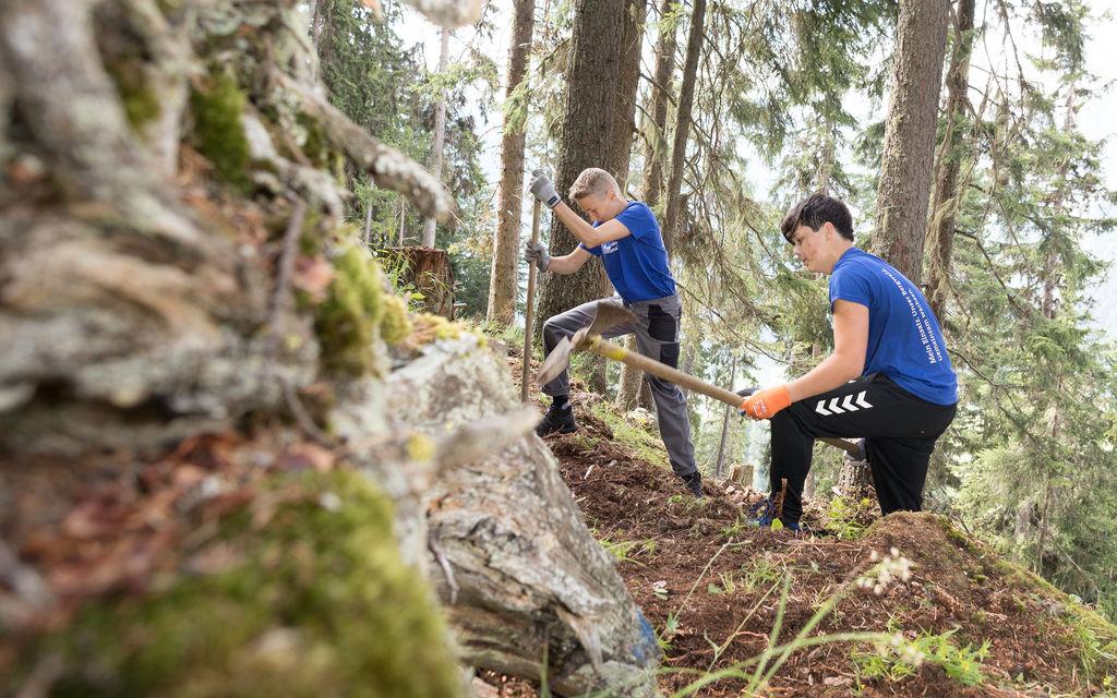 60 giovani in pieno servizio nei boschi alpini